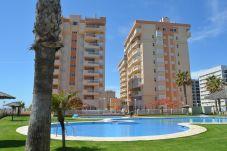 Apartamento con piscina en la zona de Tomás Maestre